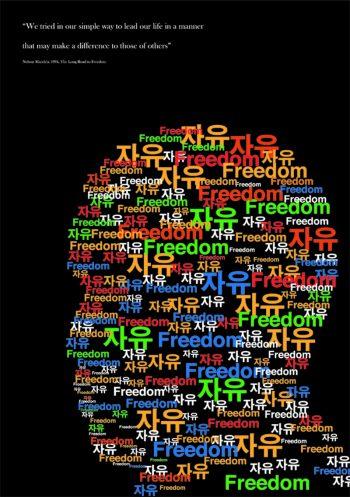 Mandela Poster Project,2013
