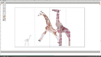 Screen grab from Gail Swanlund'sImagemakingcourse