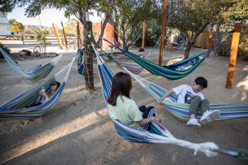 Later, the group enjoys some pre-Integratron hammock time. Photo by Colin Frazer.